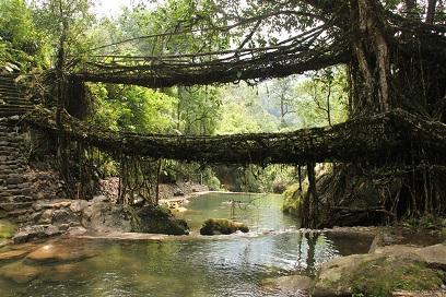 pontes naturais