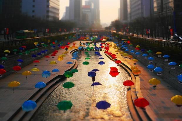 Conheça 3 rios que já foram referência em poluição e hoje estão limpos