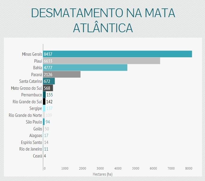 dados-desmatamento