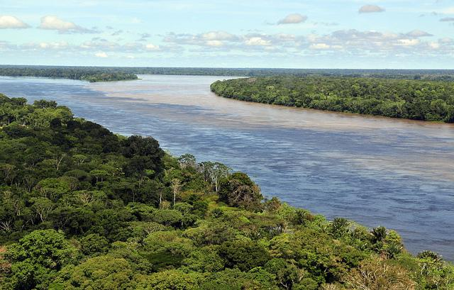 noticia-bioma-floresta-amazonica-ciat-de-flickr