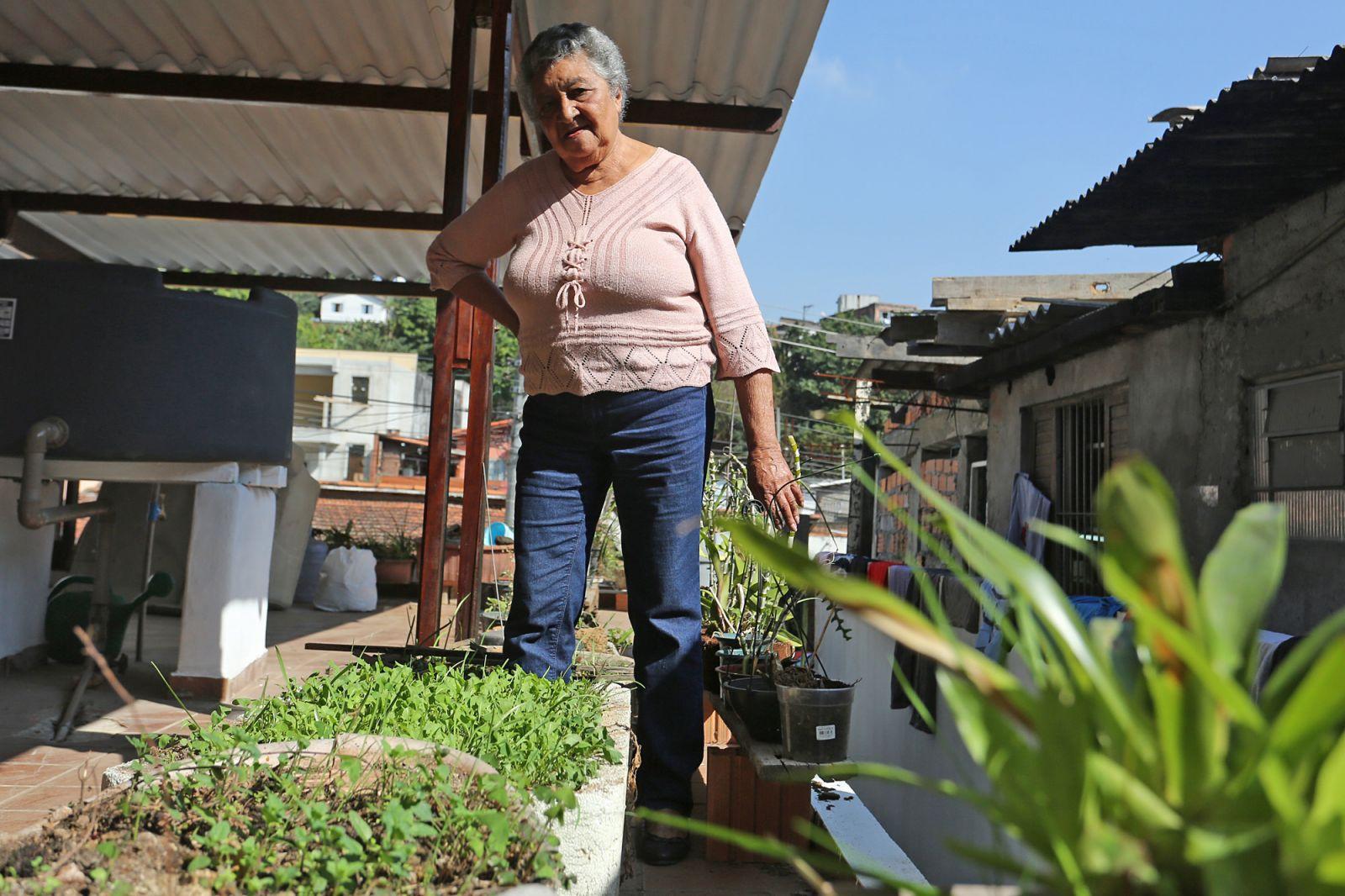 Prefeitura de SP lança projeto que transforma lixo orgânico em adubo