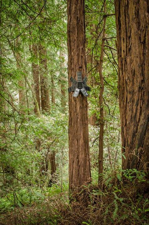 noticia-dispositivo-monitora-desmatamento-2