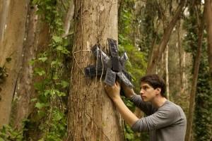 Dispositivo monitora desmatamento a partir de celulares reciclados