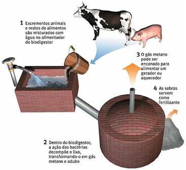 Esquema Biodigestor