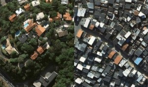 Quantidade de árvores indica desigualdade social