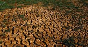 Mundo ainda não acordou para a crise da água