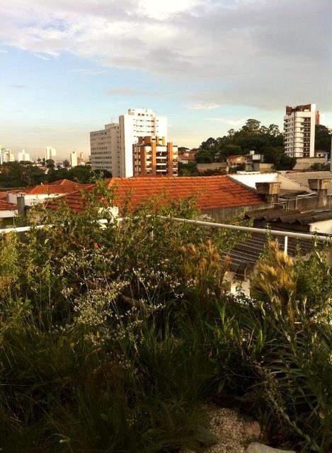 noticia-telhado-verde-em-sp-3